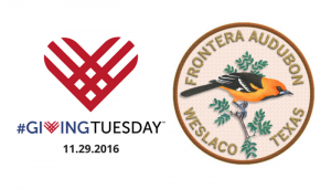 giving-tues-header