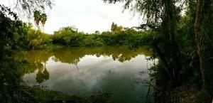 pond-shot2